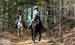 Equestrian Community North Carolina